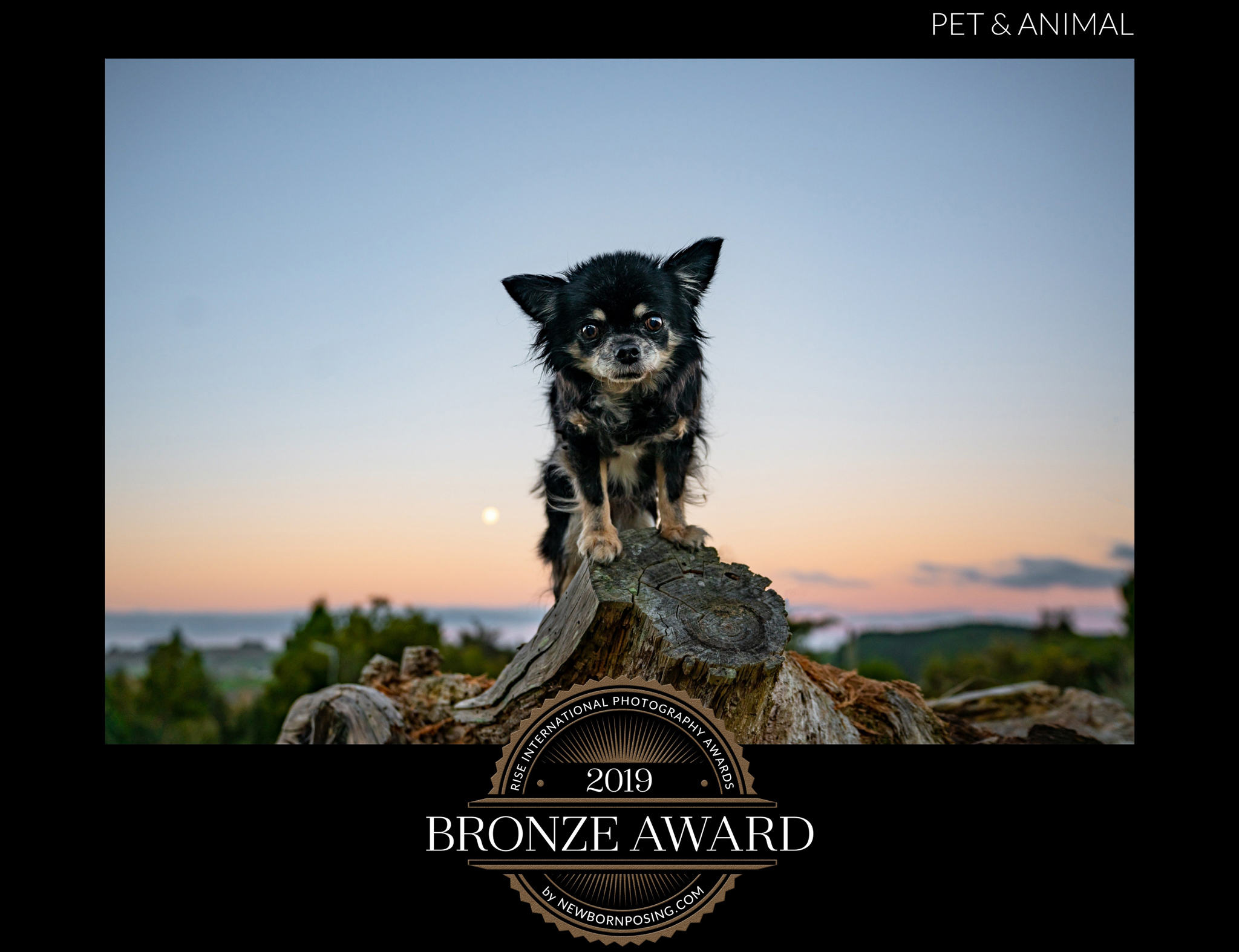 Little-Princess---Rise-Awards-2019
