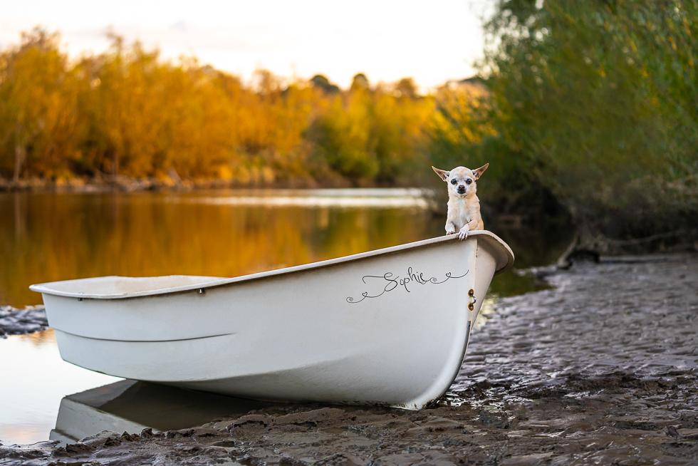 River Boat-1